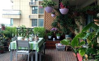 北方室内阳台养花