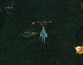 魔兽如何装备觉醒者号驱逐舰